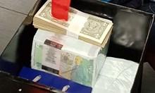 750 000 лева и златни монети с Ататюрк в банкови сейфове на данъчни измамници (Видео, обзор)