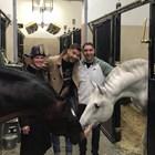 Димитров игра снощи с Беретини