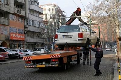 Паяците в Пловдив са под карантина до края на извънредното положение.