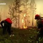 Пожари в Сибир Кадри: Ройтерс