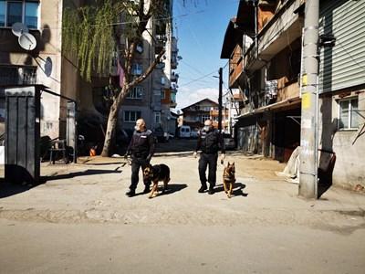Полицаи с кучета обикалят ромските махали в Пловдив СНИМКА: Снимка: Мвр