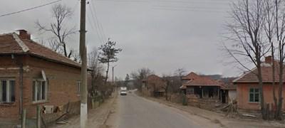 Инцидентът е станал в село Медовница  СНИМКА: Гугъл стрийт вю