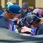 Българско семейство лежи тежко болно от COVID oт десетина дни в болницата на Падуа.  СНИМКА: ИНСТАГРАМ