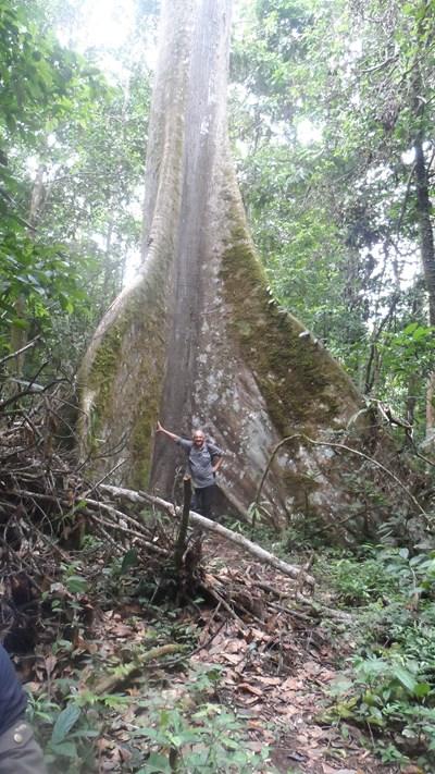 Из дебрите на Амазонската джунгла в Еквадор (видеогалерия)