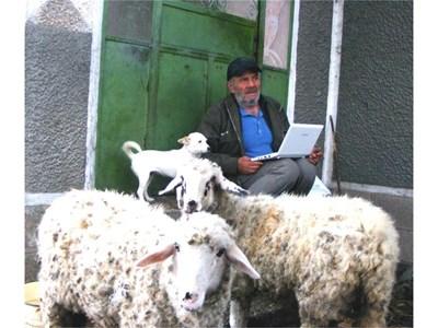 Приседнал на стълбите пред дома си, Петър чака времето да се оправи, за да изведе овцете на паша. Дотогава чати с приятел в скайпа.  СНИМКА: АВТОРЪТ