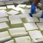 Според Българския държавен стандарт водното съдържание на класическото бяло саламурено сирене трябва да е до 54 на сто.