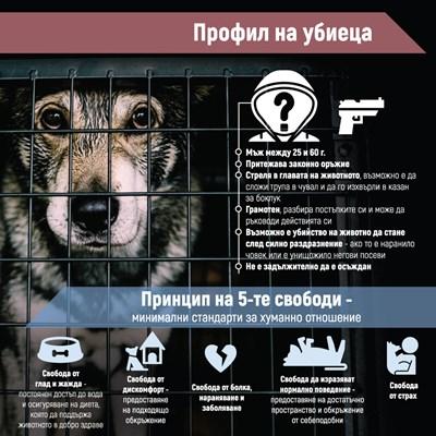 Мъж с пушка или кол  убива животни, за да шокира околните