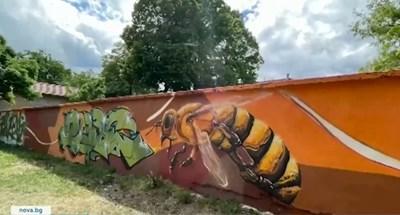 Стена на пчелите Кадър: Нова тв
