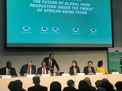 Танева: Над 35 млн.евро струва африканската чума на България, в ЕС са избили 1,4 млн. прасета
