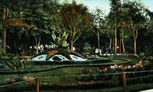 Историята на Борисовата градина