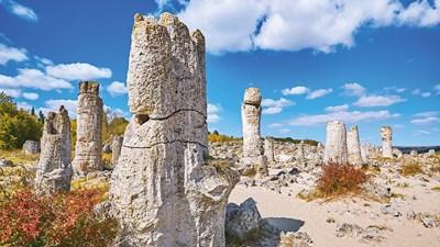 На път към дивата красота на Северното Черноморие