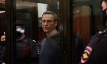 Навални трябва да лежи в затвора, защото обиди хората, рискували живота си в Отечествената война