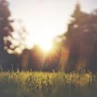 Слънце и дъжд ни очакват през новата седмица