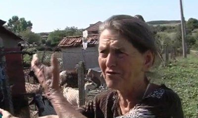 Баба Дора от Шарпово Кадър: Би Ти Ви