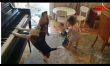 Бебе танцува на кучешко музикално изпълнение