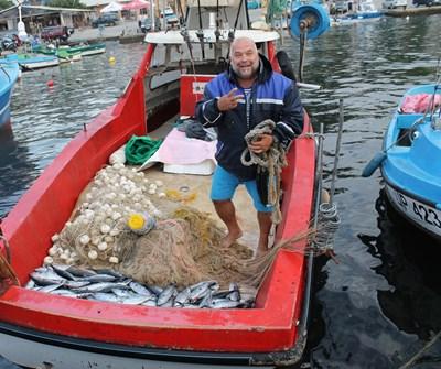Рибарите в Царево са изключително доволни от богатия улов на паламуд.