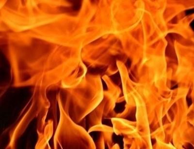 Загасиха огромен пожар край пловдивско село, унищожени са 60 дка гора и слънчоглед