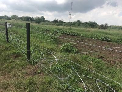 Снимка: Пресцентър на МЗХГ (Министерство на земеделието, храните и горите)