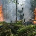 Разследват смъртта на двамата загинали при пожара в Сандански