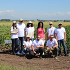 Кои са петте ползи при третиране на царевица с Амалгерол Есенс? (част I)