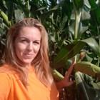 В последните години царевицата е най-успешната култура в Северна България, коментира Радка Иванова