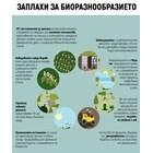 Зелена реформа: ЕС взема пари от големите фермери, за да помогне на околната среда (Инфографики)