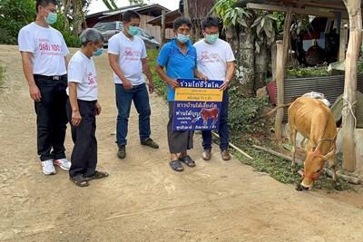 Тайландец държи плакат, с който печели жива крава от лотарията за имунизирани, стартирана в провинция Чианг Май.  СНИМКИ: РОЙТЕРС