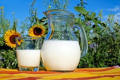 Алергията към мляко може да се прояви заедно с астма, екзема, ринит, стомашно-чревно разстройство с кървене, особена пневмония (наречена пулмонит) и дори анафилаксия