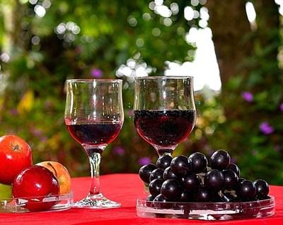 Ресвератролът се съдържа в люспите и семките на червеното грозде, във виното, произведено от него, и в някои горски плодове. СНИМКА: PIXABAY