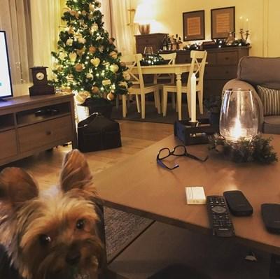 Хилда Казасян украси дома си за Коледа