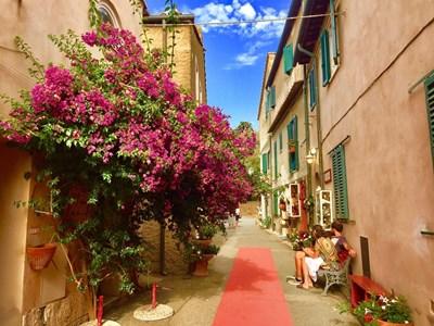 Село Болгери е родина на най-скъпите червени вина.  СНИМКИ: АВТОРЪТ