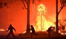 Огнен апокалипсис: Пожарите в Австралия продължават да се разпространяват чрез мълнии