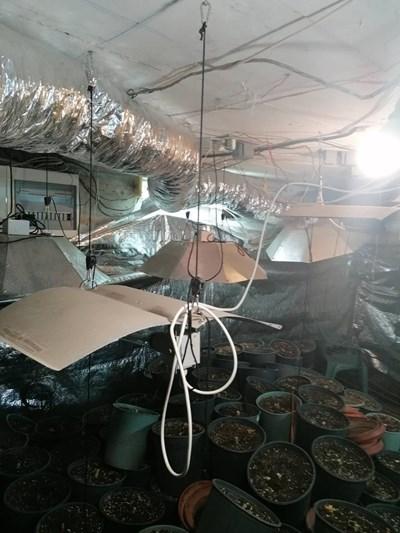 Кадър от разбитата наркоферма в Ясна поляна. Снимка:МВР