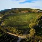"""Снимки: Кадри от филма """"Най голямата малка ферма"""""""