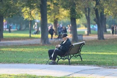 Възрастен мъж стои сам в парк в София. Намирането на компания става все по трудно в големите градове. СНИМКА: Надежда Гърбова