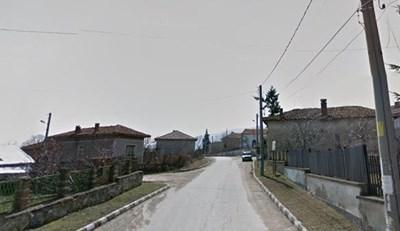 Село Паталеница СНИМКА: Гугъл стрийт вю