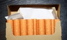 Конфискуваха контрабандни цигари за повече от 13 000 лв. във Варна