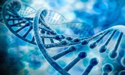 Китайско-шведски учени откриха генетичен фактор свързан с алкохолната зависимост