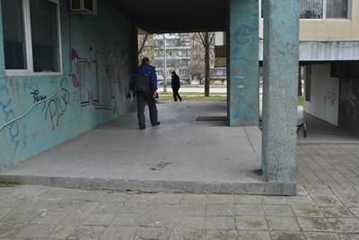Съседи вчера вървяха по кървавите следи /Снимки: Цанко Цанев