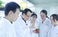 Китайски учени откриха ключов протеин за устойчивостта на растенията срещу вируси