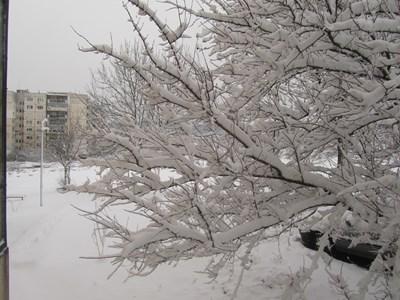 В Габрово автобуси закъсняват заради снега