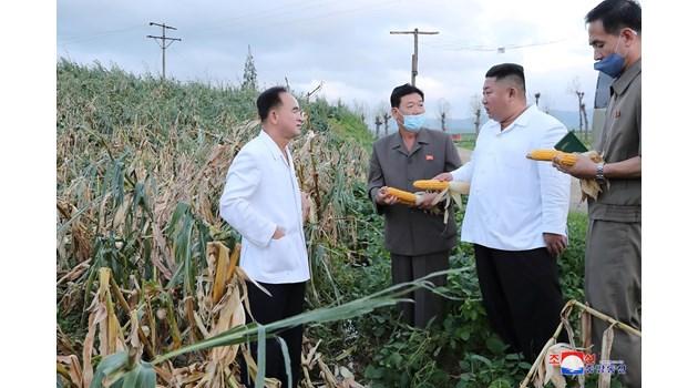 Убил ли е Ким Чен Ун сестра си от страх за поста си?
