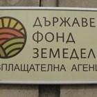 Снимка: ДФЗ