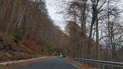 Път ІІІ-107 Рила-Рилски манастир Снимка: АПИ