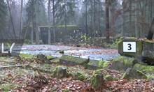 Откриха зеленчуковата градина на Хитлер (Видео)