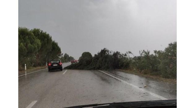 Шестима загинаха при бурята в Северна Гърция. Десетки са ранени