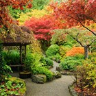 Есента - време за промени в двора