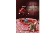 Счупен странично зъб може да доведе до импотентност