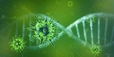 Хората с нулева кръвна група и отрицателен резус фактор са с по-нисък риск от зараза с COVID-19