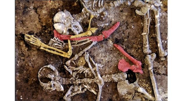 Откриха масов гроб на 9 трупа отпреди 7000 години
